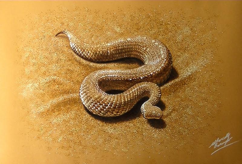 800x544 Sand Viper 3d Drawing