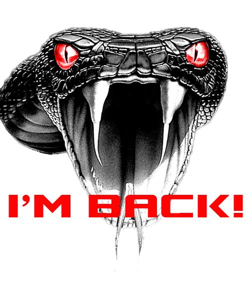500x563 Viper Snake Drawing Face