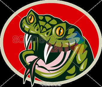 340x290 Stock Illustration Of Cartoon Drawing Of Green Viper Head Frontal