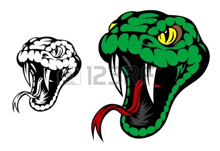 450x309 Viper Snake Hand Drawn In Old Sketch, Vintage Style Royalty Free