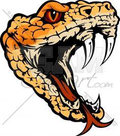236x267 Rattlesnake Head Drawing