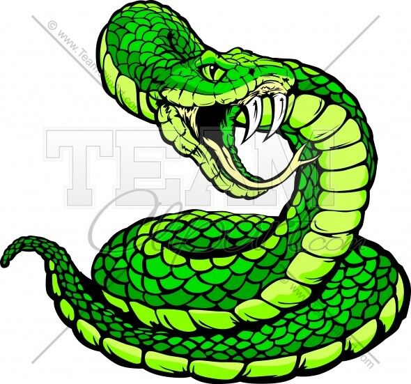 590x551 Pin By Vianca Desai On Drawings Pinterest Snake And