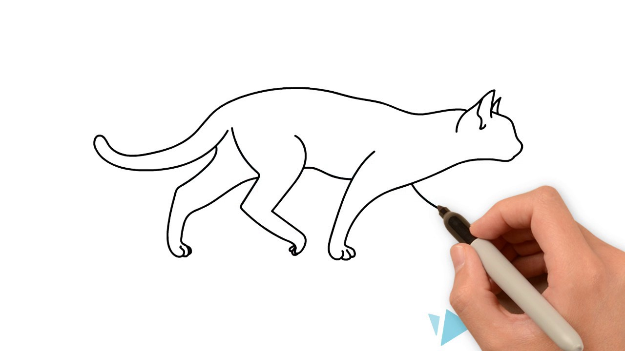 1280x720 How To Draw A Walking Cat