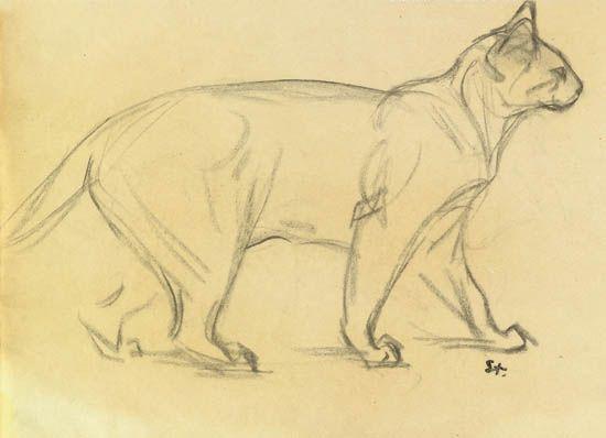 550x398 Alexandre Steinlen (Suiza, 1859 1923). Study Of A Cat