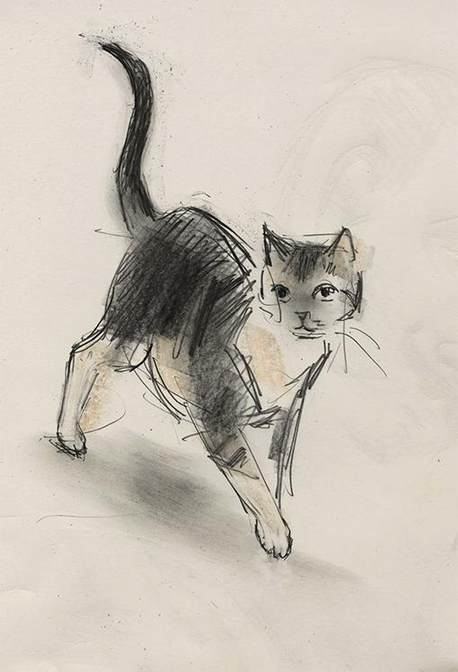 510x747 Walking Cat By Julian Williams.