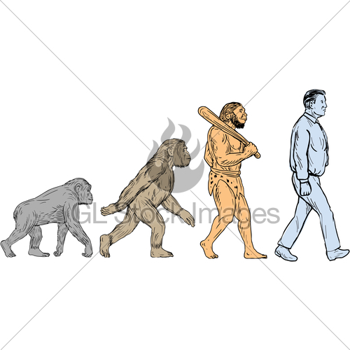 500x500 Human Evolution Walking Drawing Gl Stock Images