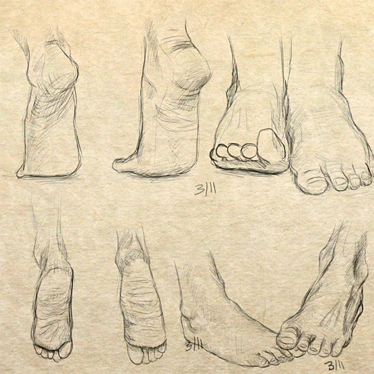 750x750 Drawings Of Feet Sketches Amp Anatomy Studies