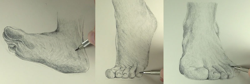 800x269 How To Draw Feet