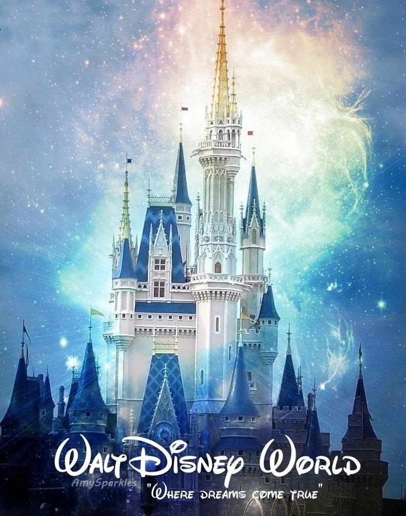 793x1008 Disney World Castle Drawing 4 One Day Park Hopper
