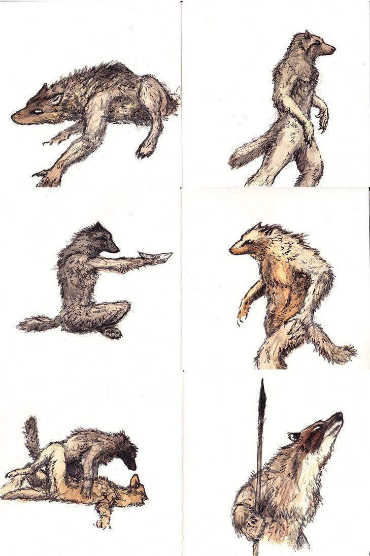729x1095 177 Best Werewolf 3 Images On Werewolf, Anatomy