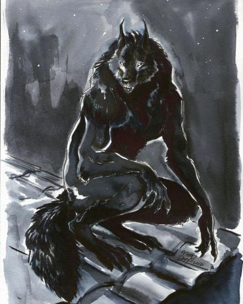 500x625 Draw A Werewolf