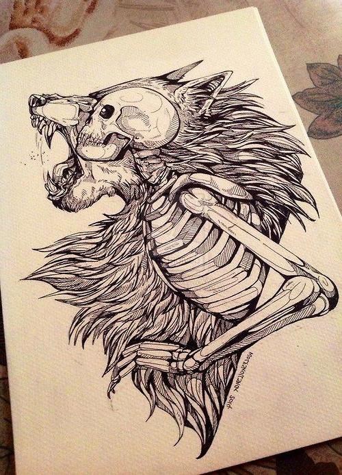 500x693 Skeleton Warewolf Tattoo Sketch Art) Skeletons