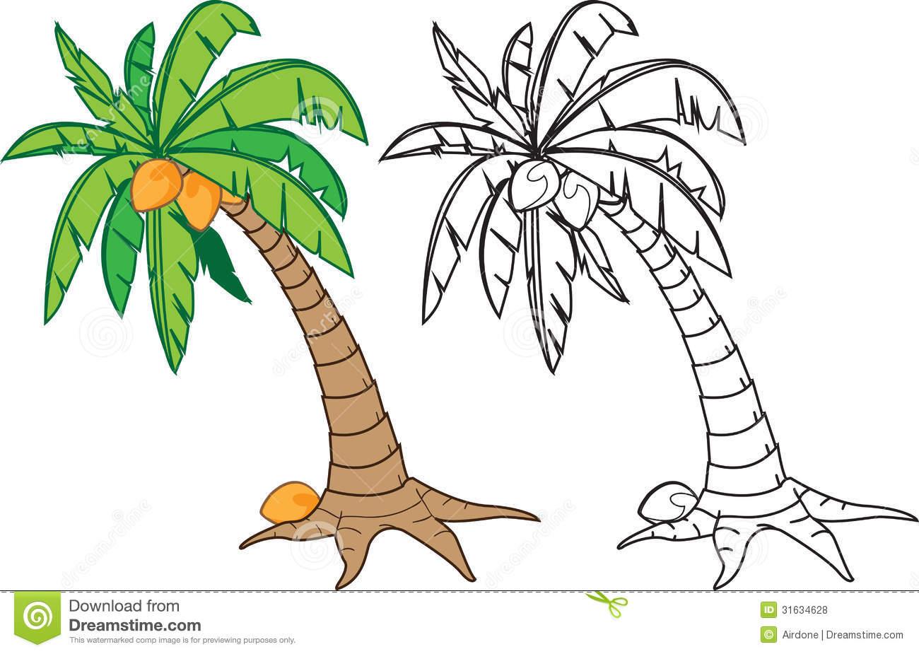 1300x925 Coconut Tree Drawing Coconut Tree Stock Vector. Image Of Warm