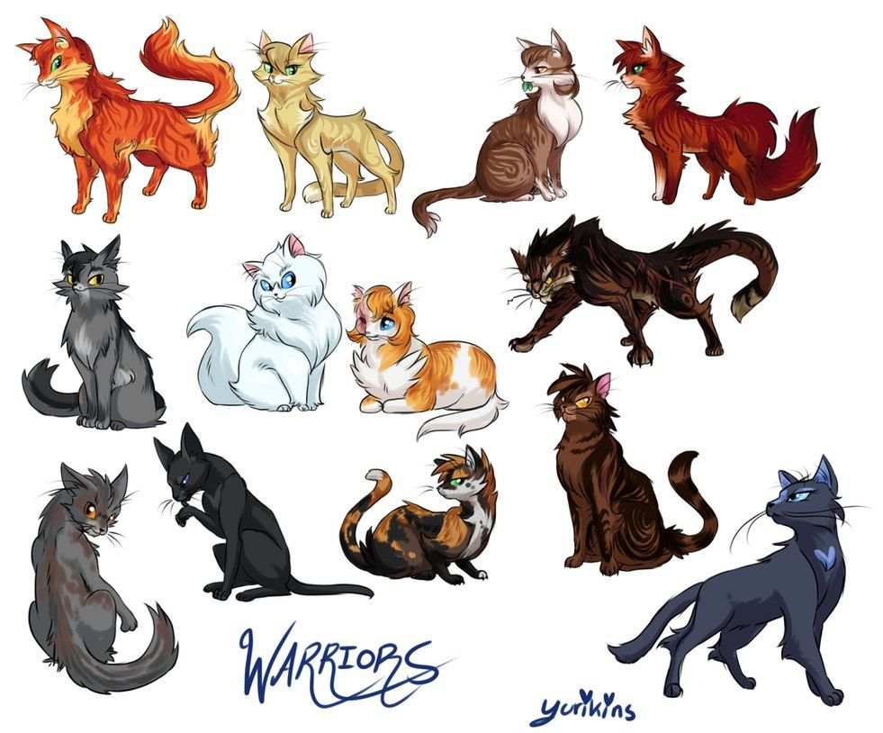 981x814 I Drew A Bunch Of Warrior Cats. I Wanted To Do Like, The Whole