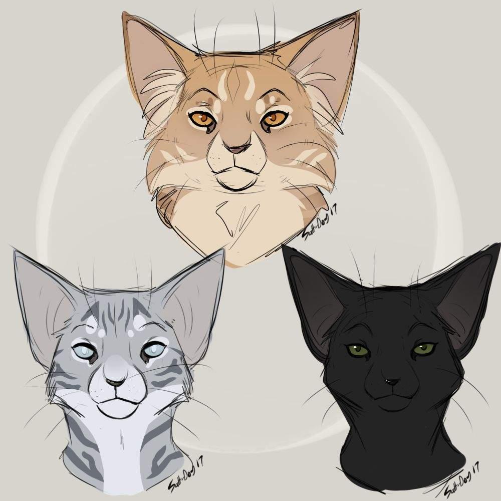 1000x1000 Warrior Cat Doodles Art Amino