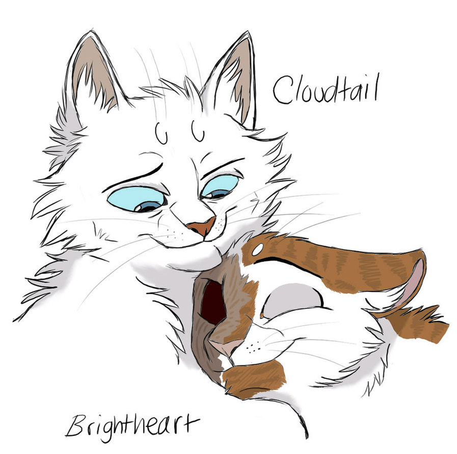 897x891 Warrior Cats Drawings A Big Strong Warrior