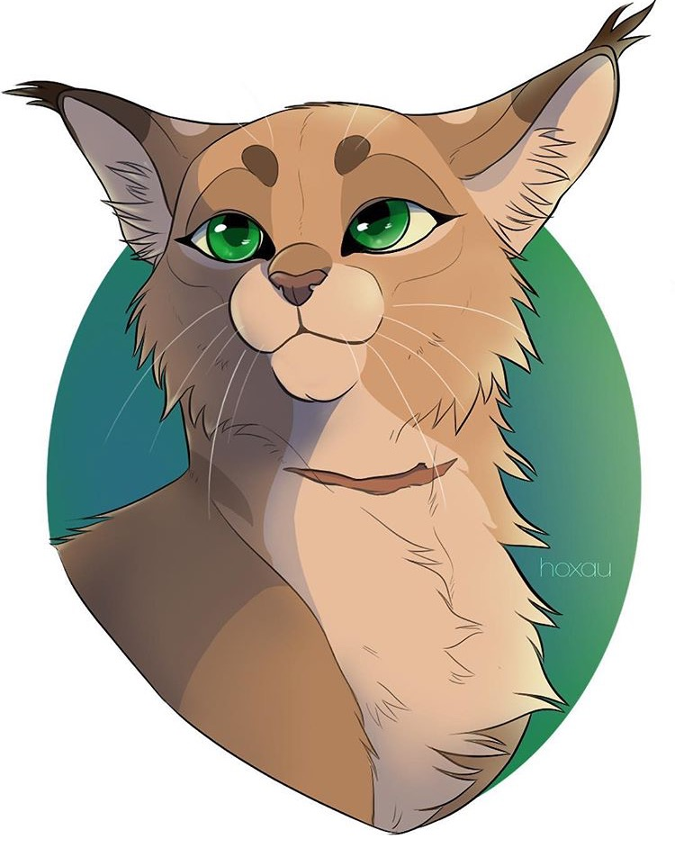 Warrior Cat Drawing Ideas at GetDrawings.com | Free for ... Warrior Cat Drawings