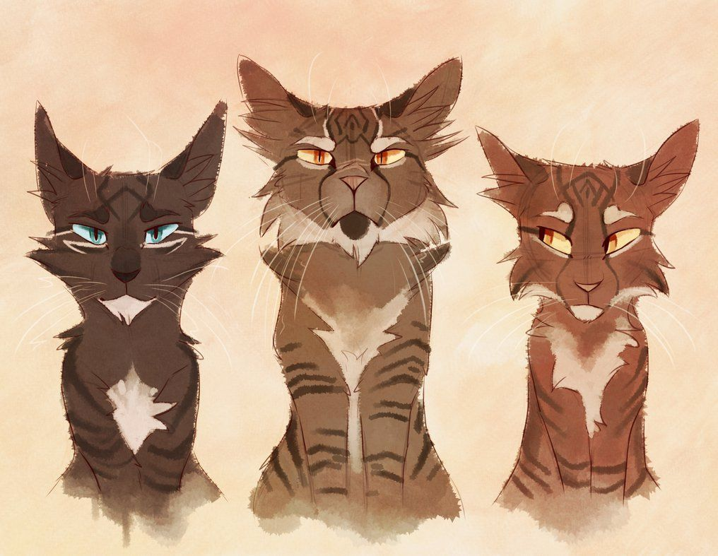 1016x787 Fanart Of My Favourite Book Series Whilst Growing Up, Warrior Cats