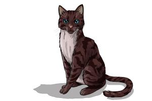300x200 How To Draw Hawkfrost From Warrior Cats