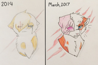 320x213 Brightheart Drawings On Paigeeworld. Pictures Of Brightheart