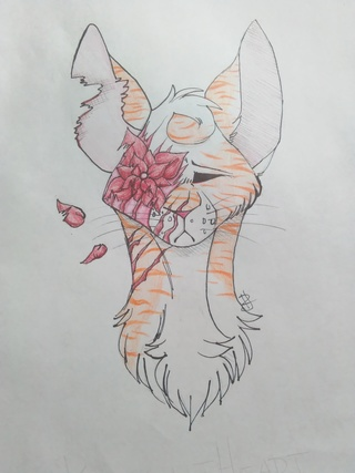 320x427 Brightheart Drawings On Paigeeworld. Pictures Of Brightheart