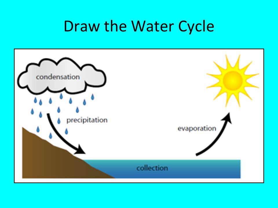 How To Draw Water Cycle For Class 3 Learn How To Draw