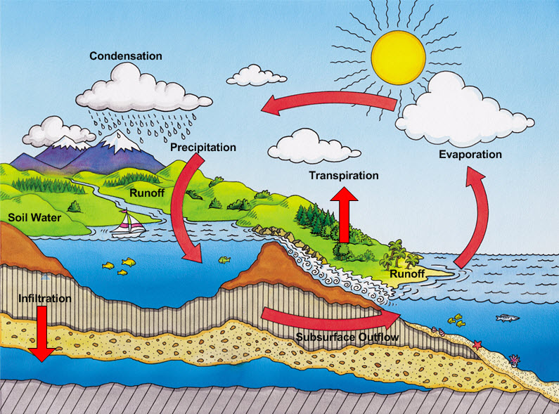 Water cycle drawing at getdrawings free for personal use water 795x589 the water cycle text images music video glogster edu ccuart Gallery