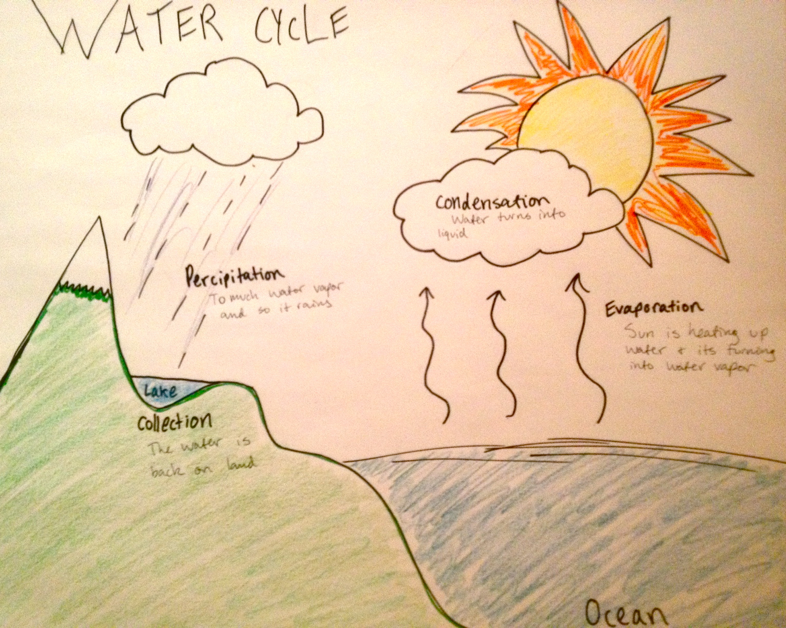 Water cycle drawing at getdrawings free for personal use water 1531x1224 water cycle drawing explanation graph annie schmidt ccuart Choice Image