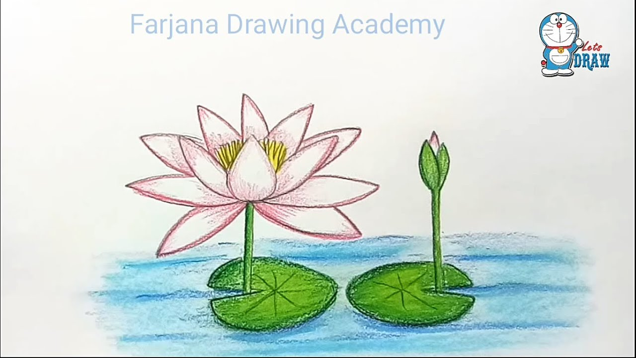 Water lilly drawing at getdrawings free for personal use water 1280x720 how to draw water lily step by step izmirmasajfo