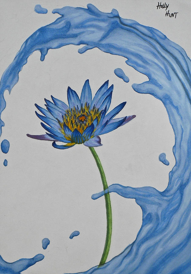 628x900 The Water Lily Drawing By Holly Hunt
