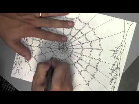 480x360 Drawing A Spider Web