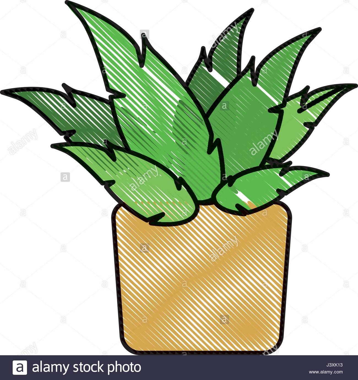 1300x1382 Drawing Pot Plant Decoration Botanic Natural Stock Vector Art