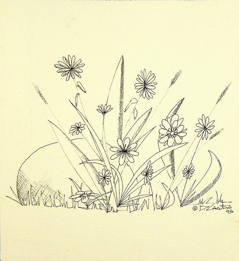 825x900 Flowers Among Weeds And A Rock Drawing By Denny Casto
