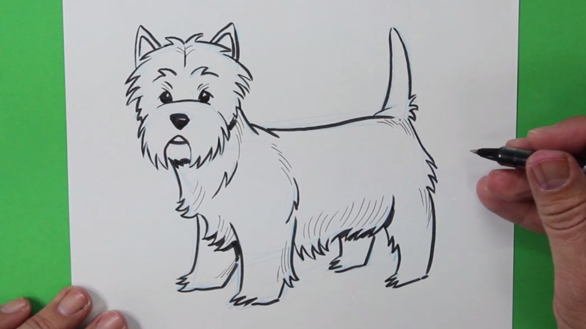 West Highland Terrier Drawing at GetDrawings.com | Free for personal ...