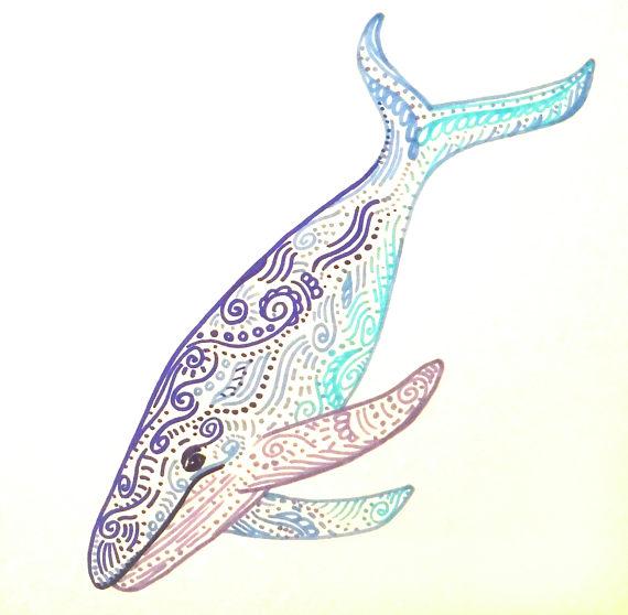 570x558 Colorful Whale Art Whale Drawing Nursery Whale Wall Decor Kids