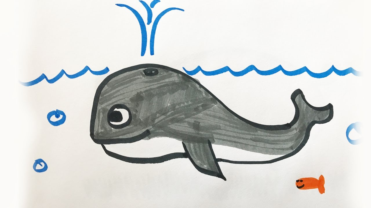1280x720 How To Draw And Color A Whale For Kids!