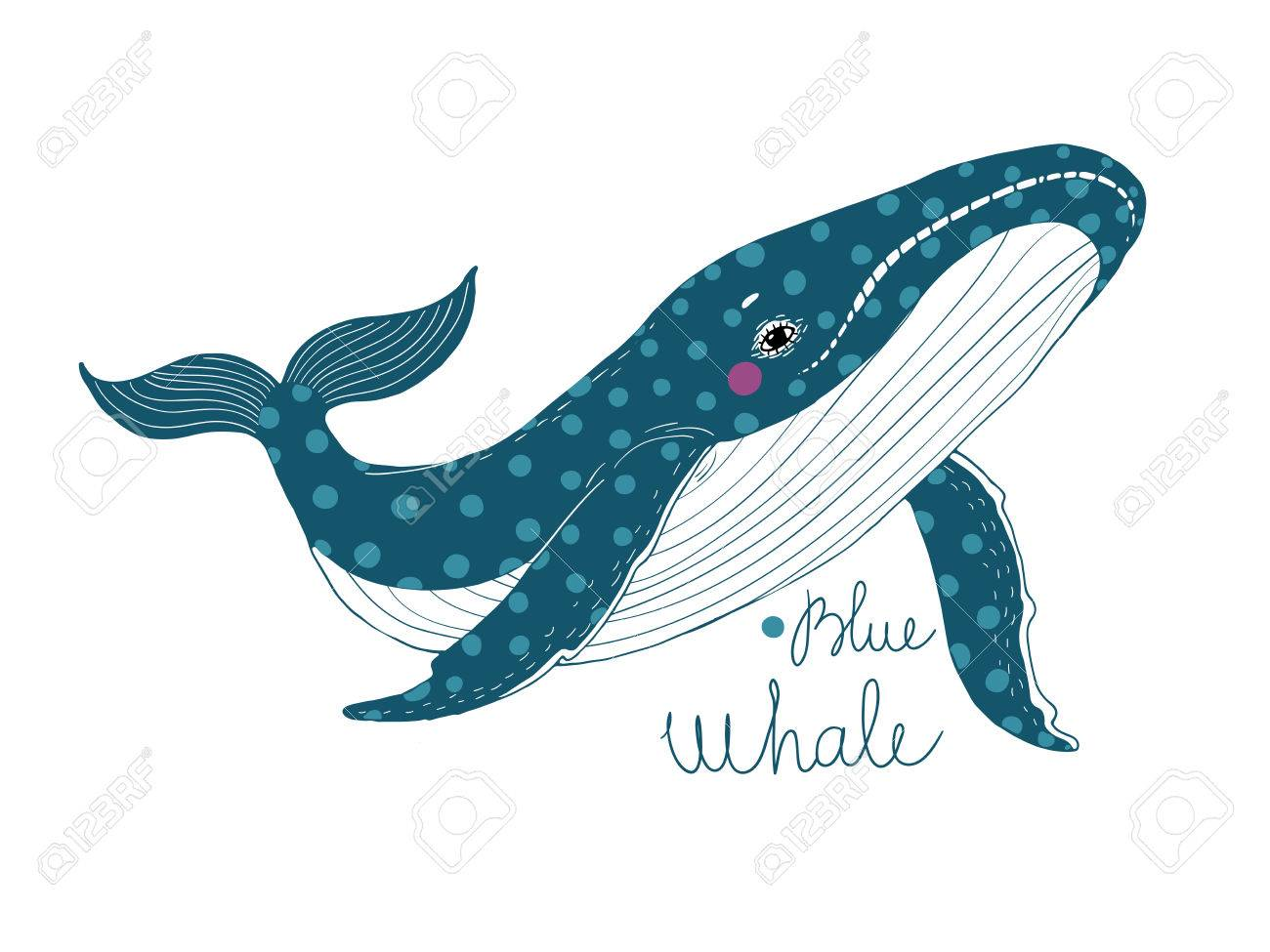 Whale Drawing Images at GetDrawings.com | Free for personal use ...