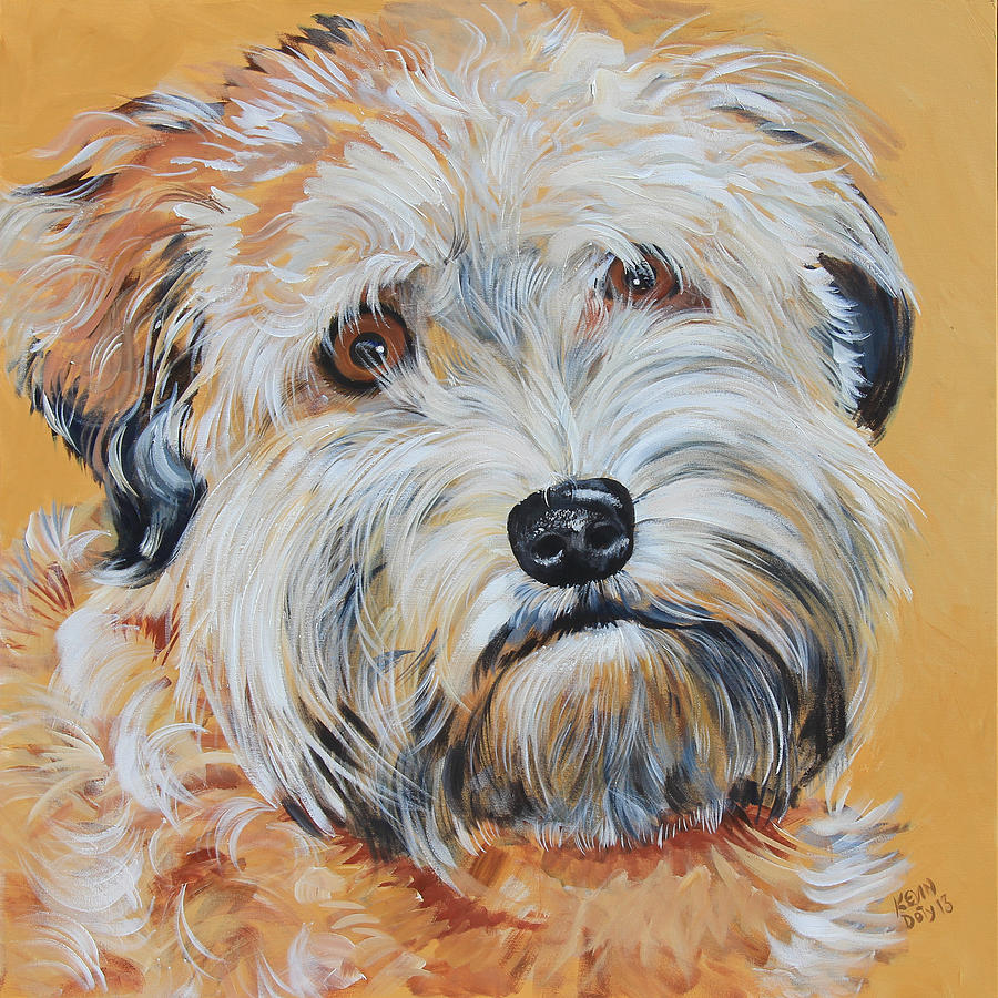900x900 Bailey Soft Coated Wheaten Terrier Painting By Kevin Doty