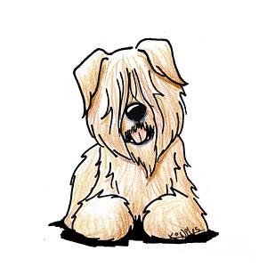 300x300 Wheaten Terrier Drawings Fine Art America
