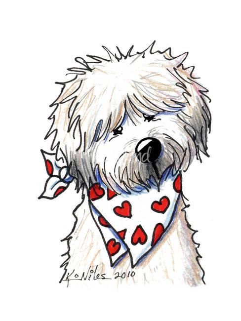 488x650 Wheaten Terrier Sweetie By Kim Niles