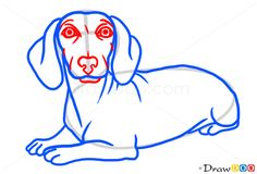 236x160 Drawing Of Dachshund Face How To Draw A Dachshund