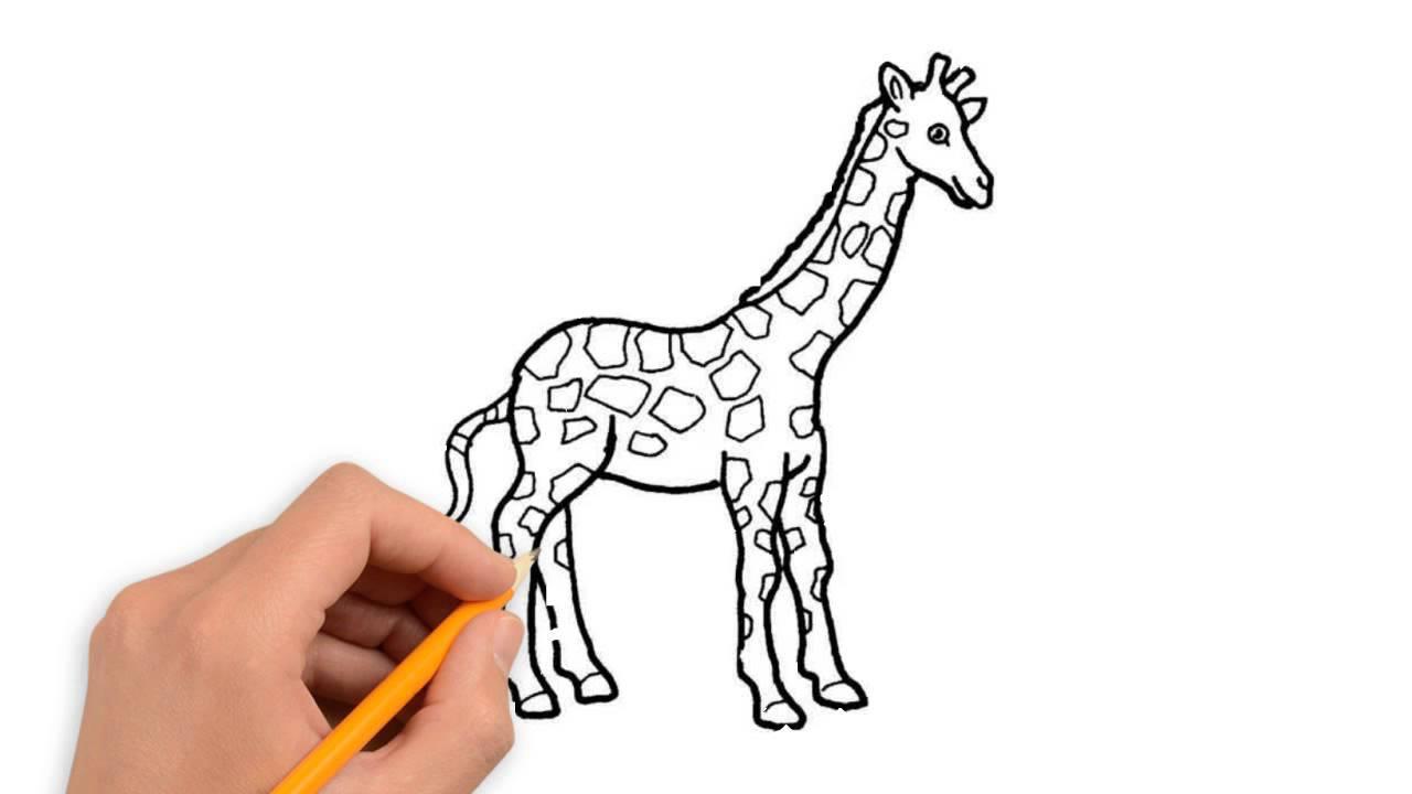 1280x720 Wild Animals Drawings In Pencil Wild Animals Animals Pencil