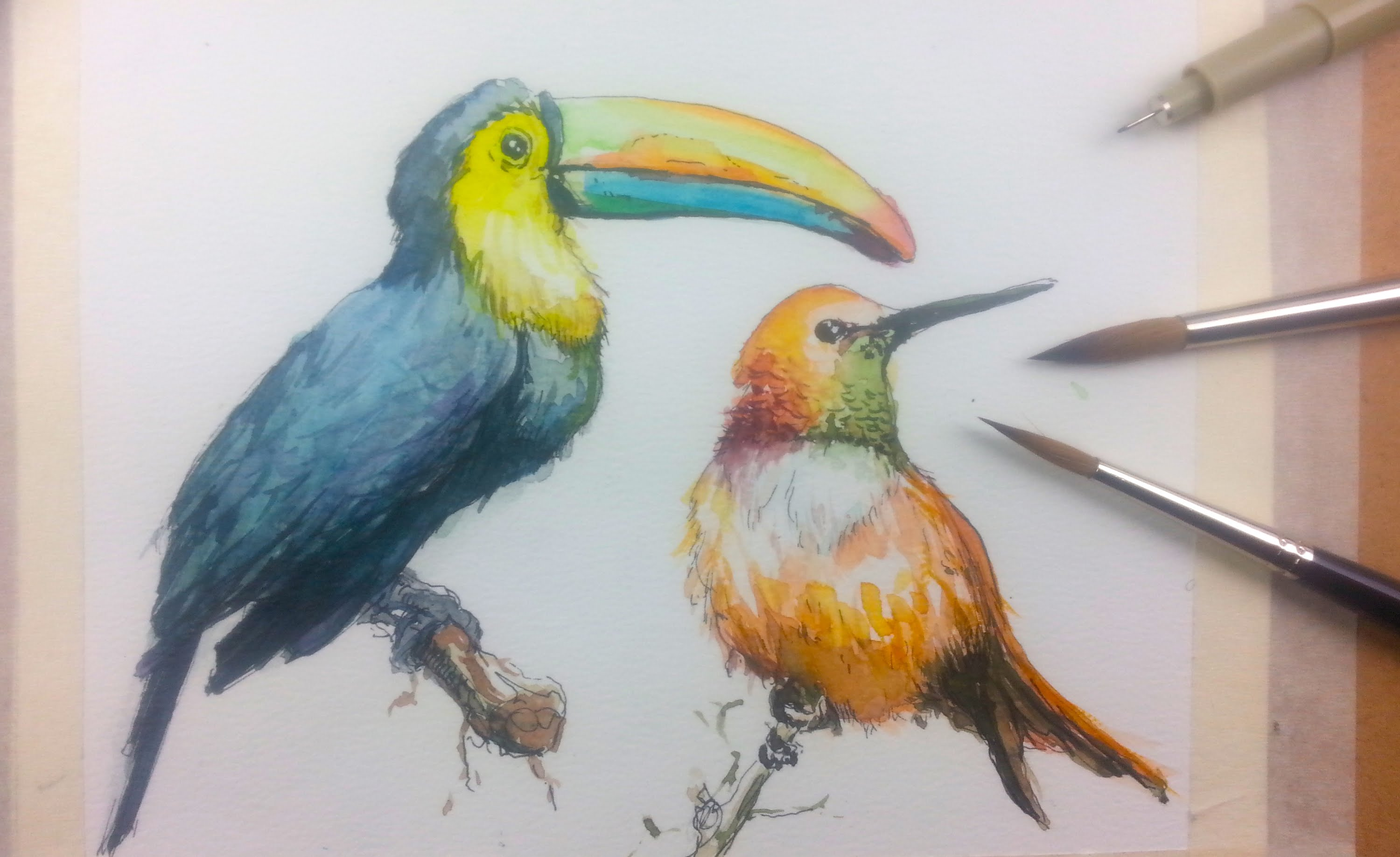 3000x1837 How To Draw Amp Paint Birds With Ink And Watercolor Part 1