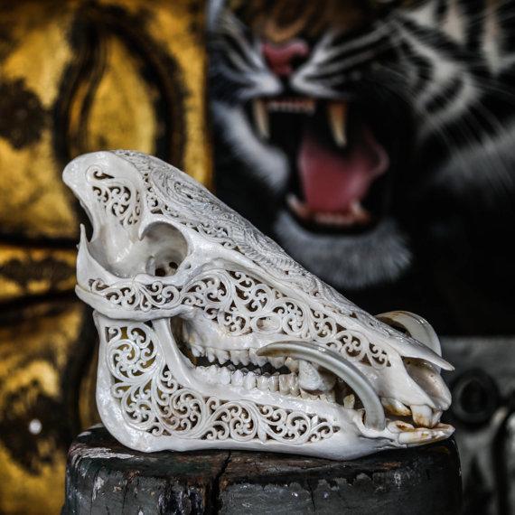 570x570 Hand Carved Pig Skull Boar Wild Boar Skull Animal Skull