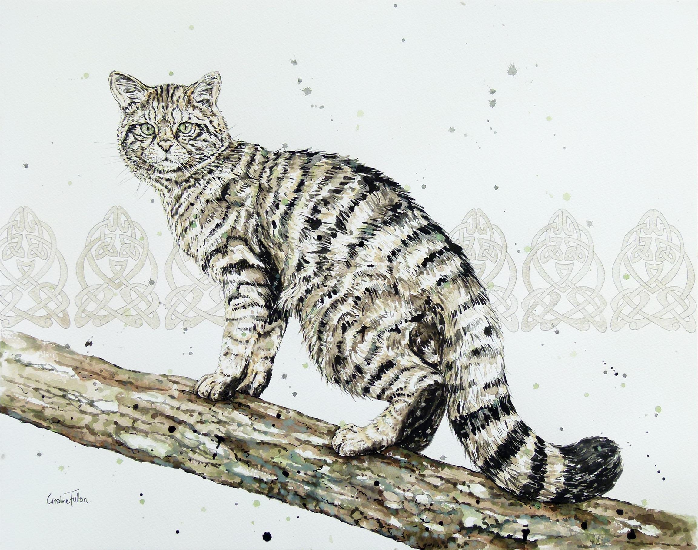 2304x1817 Leopards Cheetahs Lions Caroline Fulton Animal Painter Wildlife Art