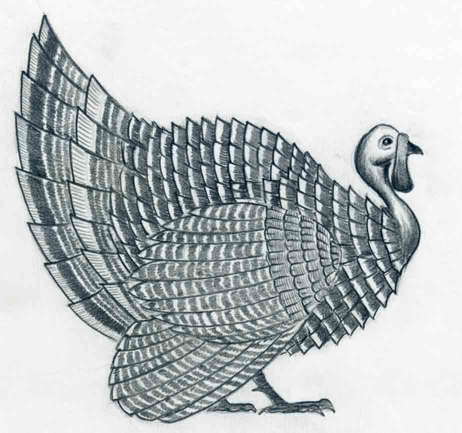 Wild Turkey Drawing at GetDrawings.com | Free for personal use Wild ...