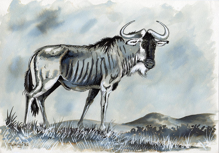 900x630 Wildebeest Drawing By Anthony Mwangi