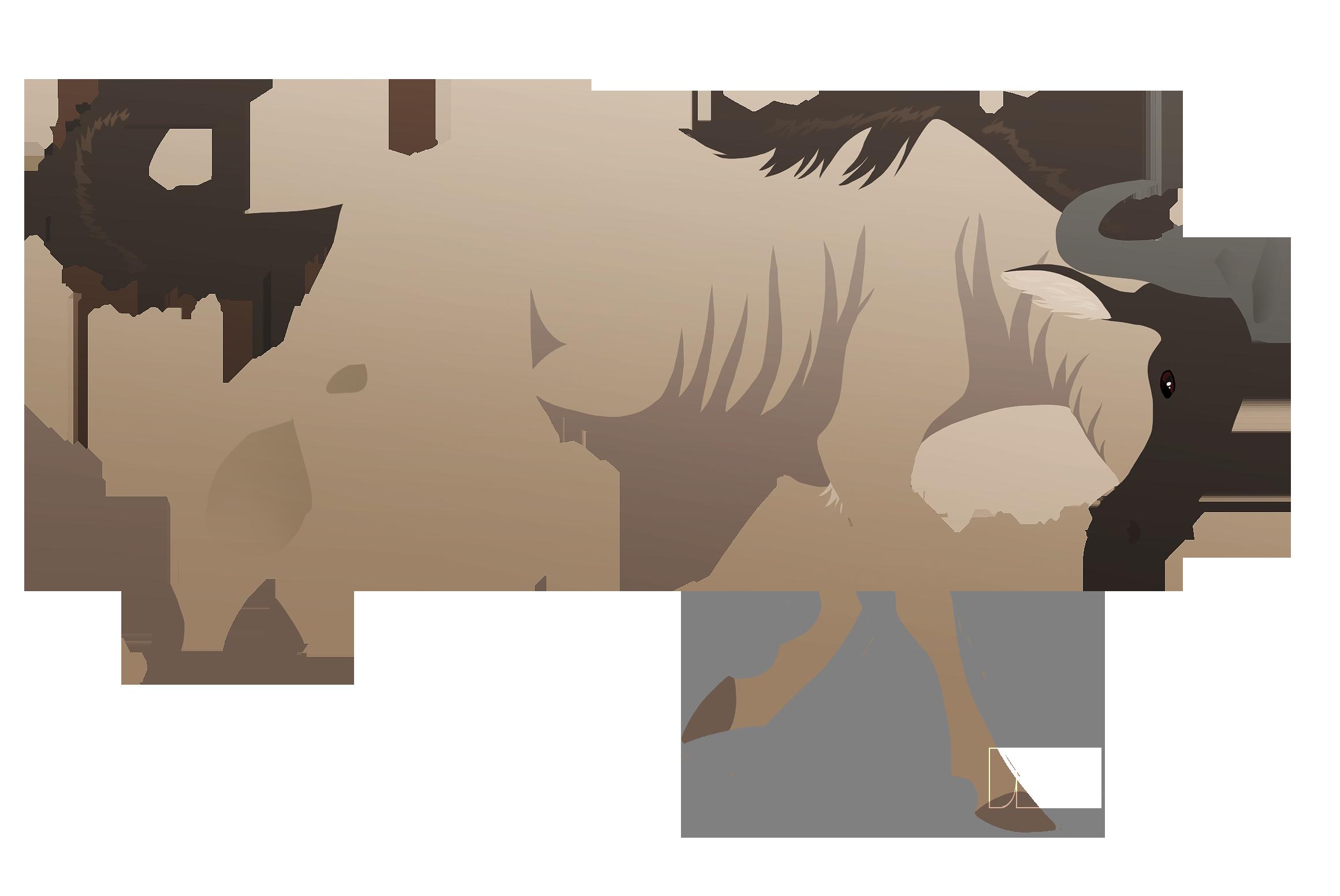 2320x1552 Wildebeest Weasyl