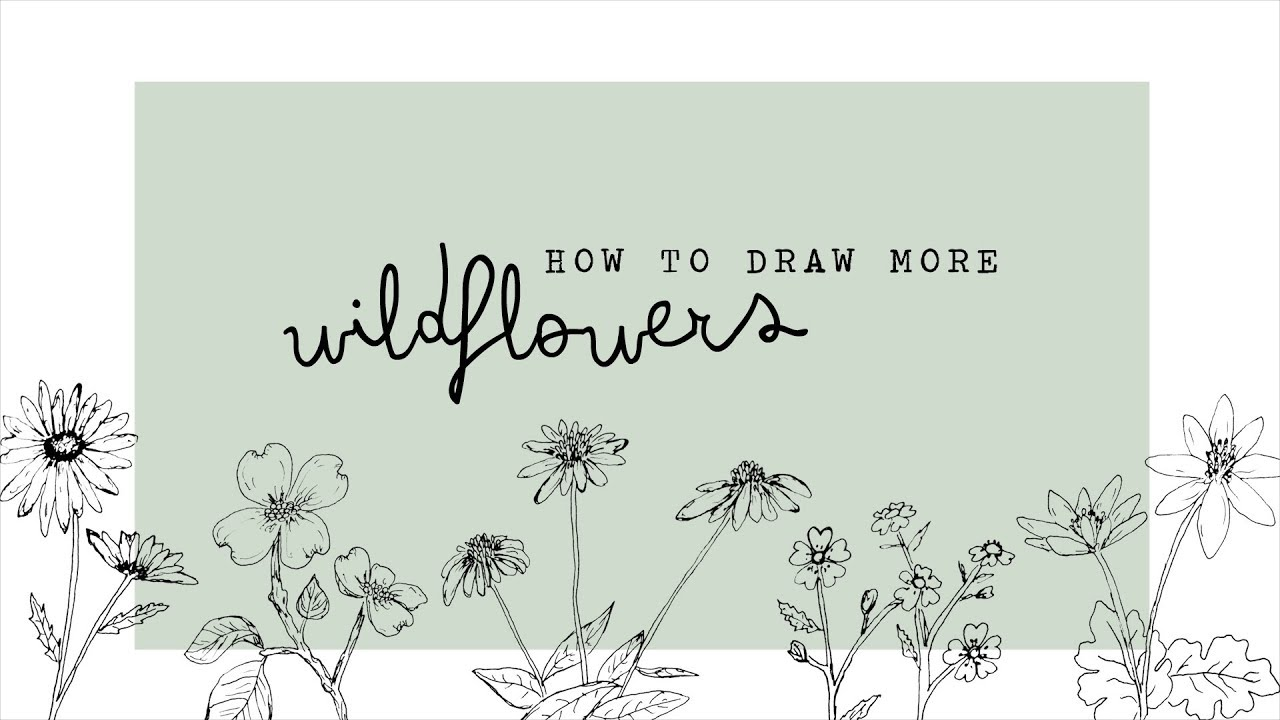 1280x720 How To Draw More Wildflowers