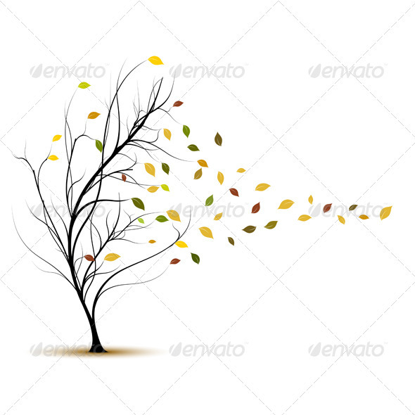 590x590 Fall Tree In Autumn With Wind Blowing